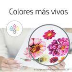 Cartucho-De-Tinta-HP-Negro-Tricolor---664-Dual-Pack
